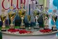 Турнир по мини\u002Dфутболу «Electronic Cup 2013» состоится в Москве 24 ноября 2013 года