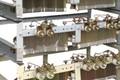 Преимущество фехрали в производстве резисторов сопротивления