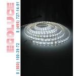 COMETA 12 5504.01 настенный светильник, потолочный светильник,, Egoluce