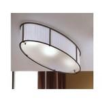 Потолочные светильники Schuller BOSTON 61-4045