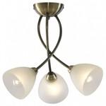 Потолочная люстра Arte Lamp Nikki A2576PL-3AB
