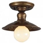 Накладной светильник Favourite Magrib 1214-1U