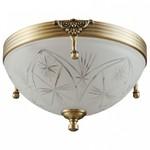 Накладной светильник MW-Light Афродита 2 317012802