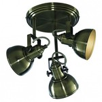Спот Arte Lamp Martin A5213PL-3AB