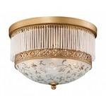 Накладной светильник Odeon Light Suri 2552/3