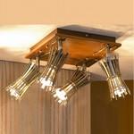 Накладной светильник Lussole Offagna LSL-8401-04
