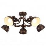 Спот Arte Lamp Martin A5216PL-5BR