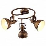 Спот Arte Lamp Martin A5215PL-3BR