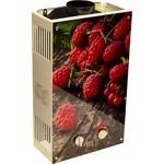 Газовый проточный водонагреватель wert 10eg berry