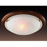 Настенно-потолочный светильник Glass 216 (220V, 2*100W, E27)