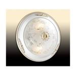Потолочный светильник Corbea 2670-2C (220V, 2*60W, E27)