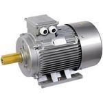 Электродвигатель 3х-фазный АИР 63A2 380В 0,37кВт 3000об/мин 1081 DRIVE ИЭК (IEK)