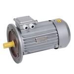 Электродвигатель асинхронный 3ф. АИР 100S2 380В 4кВт 3000об/мин (фланец) 3081 DRIVE IEK