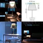 Transparent Flos F6303000, настольная лампа