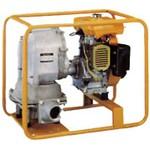 Robin PTG 208 D для густых и вязких жидкостей с бенз. двиг.
