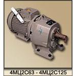 Мотор-редуктор цилиндрический двухступенчатый 4МЦ2С-63