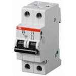 Автомат.выкл-ль 2-полюсной S202 C63