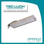 Уличный светодиодный светильник DSO19-1 CTM