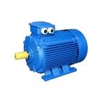электродвигатель АИР 100S8 (3,0кВт/1500об.мин)