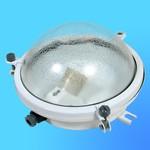 Светильник НПП 03-100-002 IP-64 с защит.стек.(Ардатов)