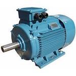 Электродвигатель 5А 200М2  37/3000