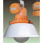 Взрывозащищенный светильник ЖСП 21ВЕх-100-831