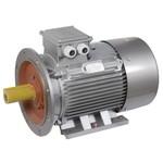 Электродвигатель 3ф АИР200M4 660В 37кВт 1500об/мин IM2081 DRIVE