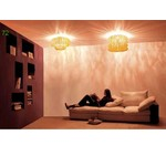 Потолочный светильник Vistosi Ecos PLECOS60B/ARCR