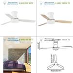 TONSAY White ceiling fan Faro 33384, люстра-вентилятор