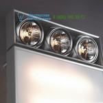 Ano-silver Trizo 21 DI.WC.3111, накладной светильник