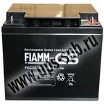 Аккумуляторная батарея FG 24204