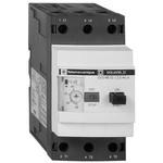 Автоматический выключатель GV3 с магнитным расцепителем 65А винтовые зажимы | арт. GV3L65