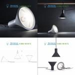 Gray 4256G Fontana Arte, подвесной светильник