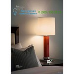 ZONCA  30854, Настольная лампа