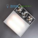 DC.WC.3132 ano-silver Trizo 21, накладной светильник