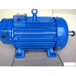 крановый электродвигатель 4МТМ 280S10 (45кВт/570об.мин)