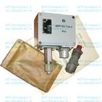 Датчик-реле давления ДЕМ102-1-06-2