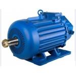крановый электродвигатель 4МТМ 225L86 (37кВт/725об.мин)