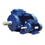 Электродвигатель 5А 280  90/1000 кВт/об