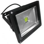 Прожектор светодиодный BIOLEDEX ® 30W 2500 Lm дневной белый
