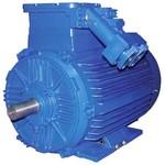Электродвигатель взрывозащищенный ВАО2-280S2