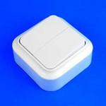Выключатель 2 клав. о/п  А56-134 Пралеска