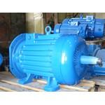 крановый электродвигатель 4МТМ 280L10 (75кВт/575об.мин)