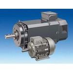 Электродвигатель Siemens 1LE1002-1DA33-4AA4
