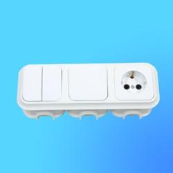 Блок 3В-РЦ-008 СП (1-кл.выкл.+ 2-кл.выкл.+евророзетка) АБС с монтажной коробкой (Пинск)
