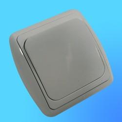 Выключатель 1 СП С1 10-002 АБС бел./бел.рамка 10А (Ростов)