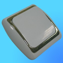 Выключатель 1 СП С16-002 АБС бел./зол. рамка (Ростов)