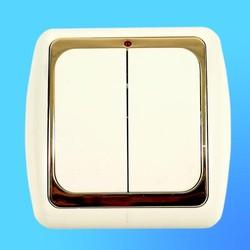 Выключатель 2 СП С56-003 АБС беж./зол. рамка со световым индикатором (Ростов)