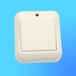 """Выключатель 1 ОП А16-046М,с металл.монтаж. пласт.,сл.кость,со световым индикатором,""""Прима"""" (Wessen)"""