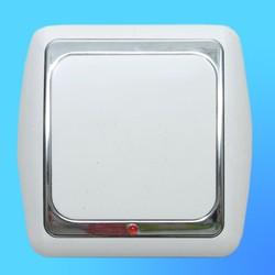 Выключатель 1 СП С16-003 АБС бел./серебр. рамка  со световым индикатором (Ростов)